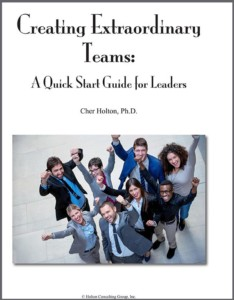 CreatingExtraordinary-Teams-Booklet-HCG