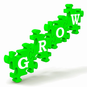 Strategic Planning for Extraordinary Leaders: Replace SWOT with GROW